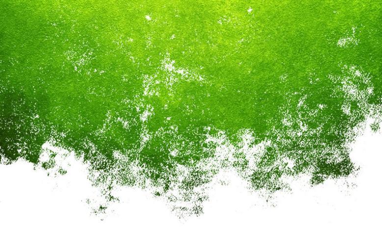 发展而来的高固含量溶剂型涂料成为家庭装修中普遍使用的一种绿色涂料